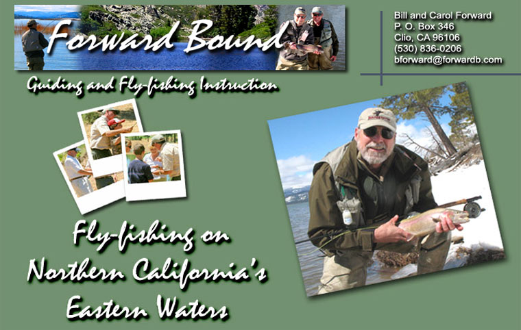 Forward Bound Guiding, Fly fishing Instruction, and Hiking